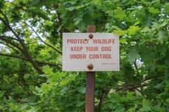 保护野生生物收留狗在控制标志下 库存图片