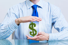 保护金钱投资 库存图片