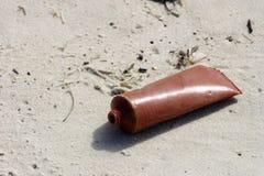 保持海滩干净。 免版税库存照片