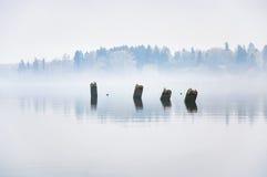 保持从码头的具体堆黏附在水外面 大量的雾 免版税图库摄影