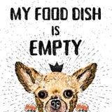 保留安静并且喂养狗 免版税库存照片