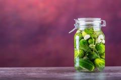 保留 腌汁瓶子 瓶子用腌汁,南瓜垂度,白椰菜,烤红色黄色胡椒 泡菜 图库摄影