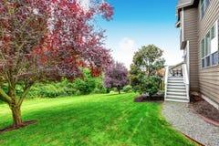 保管妥当的草坪在美好的后院 议院外部 库存照片