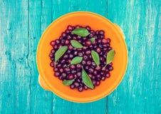 滚保龄球用在蓝色土气木背景的新鲜的甜樱桃 免版税图库摄影