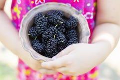 滚保龄球用莓果在一个小女孩的手上 库存图片
