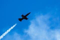 信天翁L-39喷气机 免版税库存照片