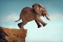 信念跳进空隙的概念大象飞跃  免版税库存照片