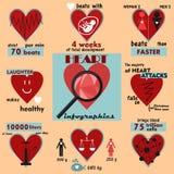 信息图表和有趣的事实关于人的心脏 库存图片