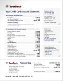 信用卡银行帐户声明模板 免版税库存照片