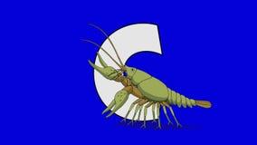 信件C和小龙虾(前景) 向量例证