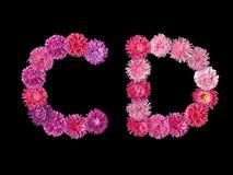 信件C,从明亮的翠菊的D 库存图片
