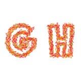 信件G, H由秋叶做成 库存图片