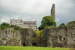 修剪城堡,修剪,爱尔兰墙壁  库存照片