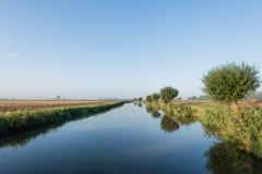 修剪树枝在镜子光滑的水表面反映的杨柳 免版税库存照片