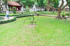 修剪的花园在文学寺庙的第二个庭院里在河内,越南 免版税图库摄影