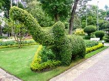 修剪的花园大象在一个植物园里 库存图片