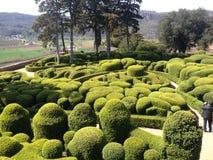 修剪的花园庭院 免版税图库摄影