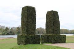 修剪的花园树篱 免版税图库摄影