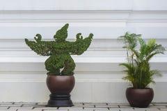 修剪的花园艺术泰国 免版税库存图片