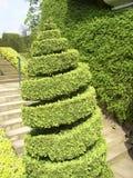 修剪的花园转动 免版税库存照片