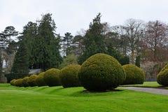 修剪的花园, Berrington霍尔, Herefordshire,英国 库存图片