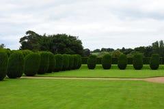 修剪的花园, Montacute议院,萨默塞特,英国 免版税库存照片