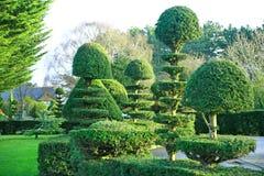 修剪的花园 免版税库存图片