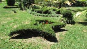 修剪的花园 免版税库存照片