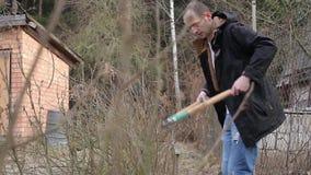 修剪结构树和灌木 股票录像