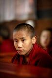 修士在加德满都,尼泊尔 库存图片