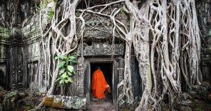 修士在吴哥窟柬埔寨 Ta Prohm高棉寺庙 免版税库存图片