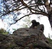 修士的石雕象 库存照片