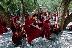 修士藏语 免版税图库摄影