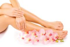 修指甲和修脚与一朵桃红色兰花开花 免版税图库摄影