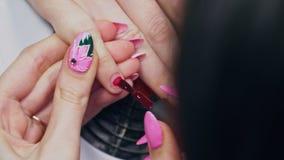 修指甲师抹她的手指与棉花餐巾并且绘她的与红色油漆的钉子 股票录像