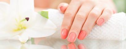 修指甲概念 美好的woman& x27; 有完善的修指甲的s手在美容院 库存图片