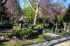 修改Friedhof 免版税图库摄影