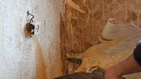 修理在房子里 剥去从墙壁的老棕色墙纸 老墙纸一个大片断剥落墙壁 影视素材
