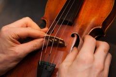 修理小提琴 库存图片