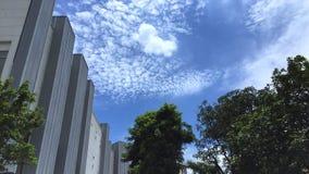 修造和与树的蓝天背景在前面 免版税库存图片
