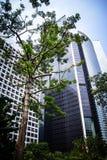 修造在香港商业区的现代摩天大楼底视图  免版税库存图片