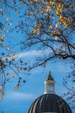 修造有秋天叶子的加利福尼亚国会大厦金黄圆屋顶 图库摄影