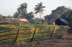 修造的竹物质堆在亚洲,印度 免版税图库摄影