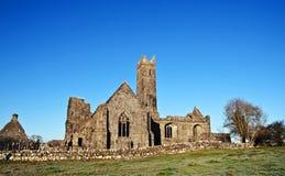 修道院古老获取爱尔兰废墟冬天 免版税库存照片