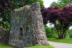 修道院庭院,埋葬St埃德蒙兹,萨福克,英国 免版税库存照片