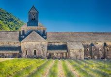 修道院开花的欧洲开花法国gordes淡紫色luberon普罗旺斯行senanque横谷 戈尔代 免版税图库摄影