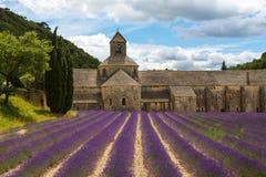 修道院开花的欧洲开花法国gordes淡紫色luberon普罗旺斯行senanque横谷 库存照片