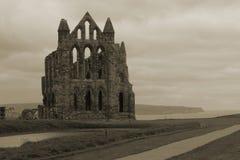 修道院海湾俯视whitby 免版税图库摄影