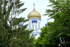 修道院的被放弃的教会 教会 树 库存照片