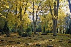 修道院altenberg的公墓 库存图片